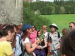 GGM_Kraeuterwanderung_Wildkraeuter_2013_007
